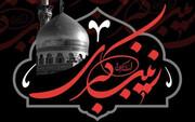 حضرت زینب (س) الگوی تمام نمای بشریت